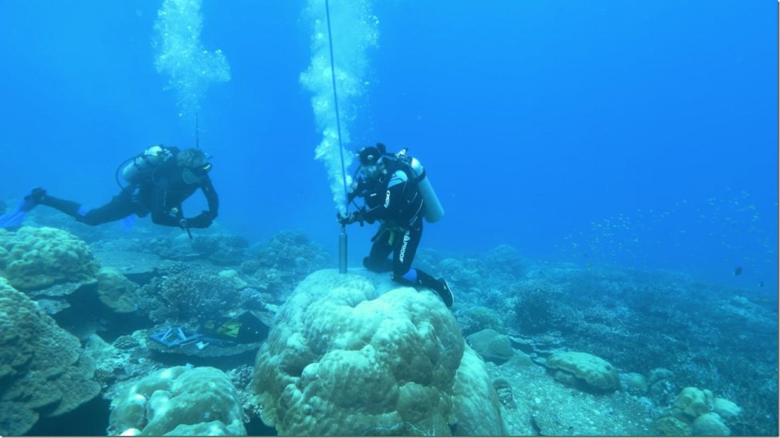 IMAGE: Researchers dive down to corals to extract coral cores that will give us information about Earth's past climate. Credit: Picture: Jason Turl