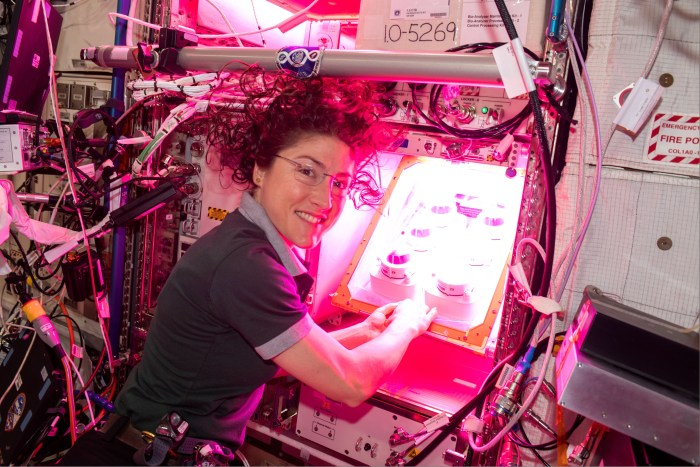 NASA astronaut Christina Koch initiates the Veg-PONDS-02 experiment on the International Space Station within Veggie by filling the upper reservoir on April 25, 2019. Credits: NASA/David Saint-Jacques