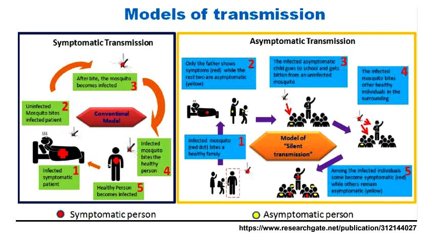 models_of_transmission