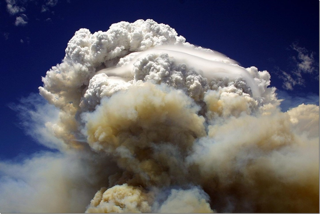 A towering cloud of smoke billows in the Willow Fire near Payson, Arizona on July 8, 2004. Credit: Eric Neitzel/ Wikimedia Commons