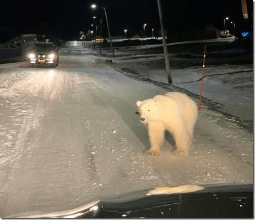 svalbard-pb-visits-longyearbyen-28-dec-2019-icepeople