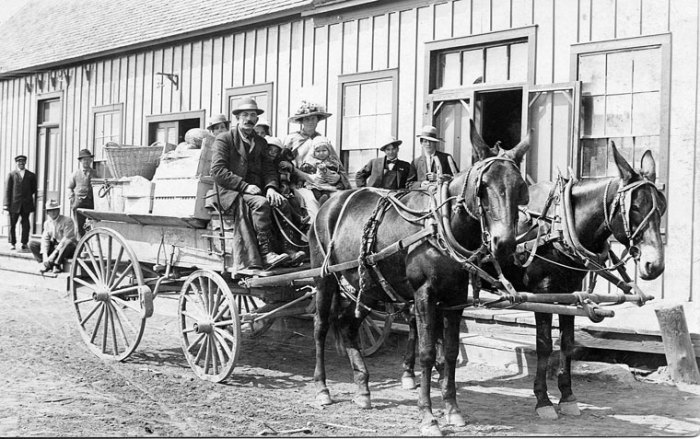 Mule wagon loaded with personal belongings