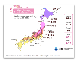 cherry blossom forecast map.png