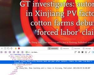 Global Times Slavery Article Screenshot