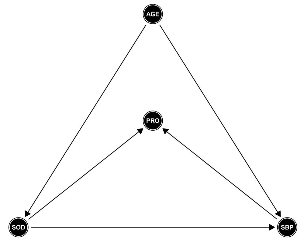 medium resolution of assumed dag under respective model