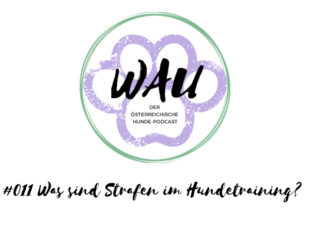 was-sind-strafen-im-hundetraining-podcast-hunde-training