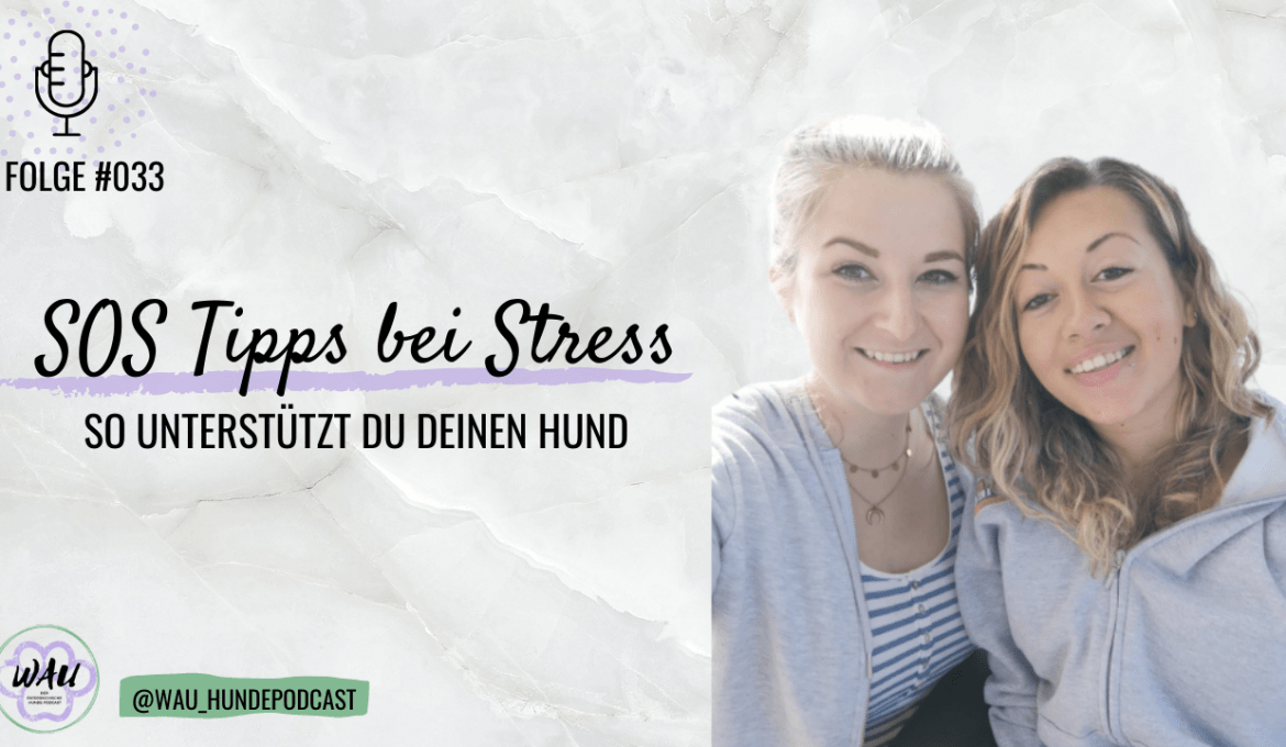 sos-tipps-hund-stress-angst-podcast