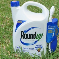Five reasons why Roundup should be banned forever