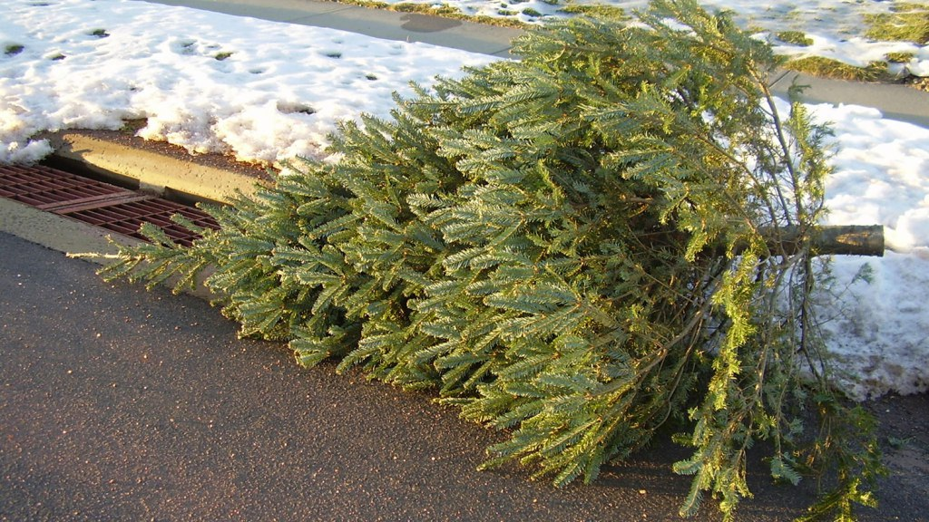 Christmas Tree Pick Up.Christmas Tree Pickup Scheduled In Wausau Wausau Pilot