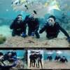 沖縄の体験ダイビング