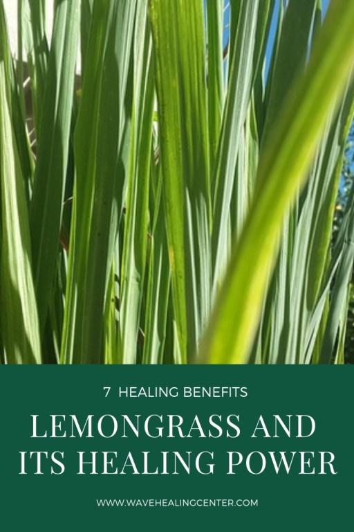 Lemongrass and its healing power