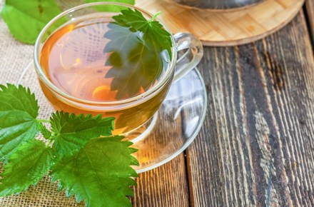 5 amazing things you did not know about stinging nettle