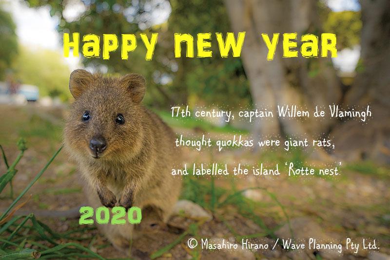 New Year 2020 その昔、大きなネズミと間違われたロットネスト島のクオッカ
