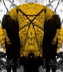 Austra - Feel It Break (2011)