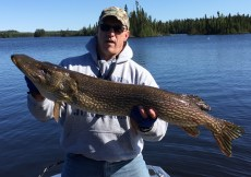 "44.5"" northern pike"