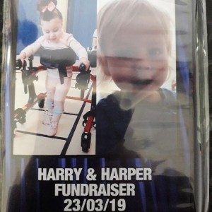Harry & Harper Fundraiser DVD Front Cover