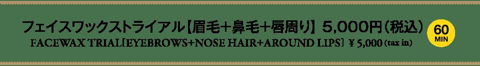 waxperience_フェイスワックストライアル【眉毛+鼻毛+唇周り】5,000円(税込)