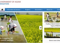 Assam Irrigation