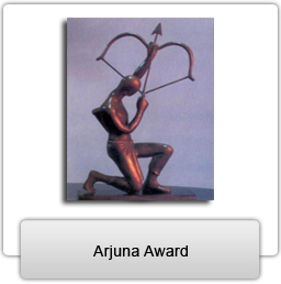 """4 way chess online typical plant cell diagram labeled arjuna awards – 2012 """"prestigious sports award"""" in india 