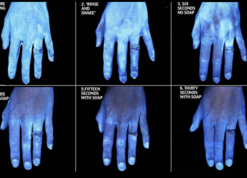 Image shows how 20-30 seconds of handwashing with soap removes most germs.