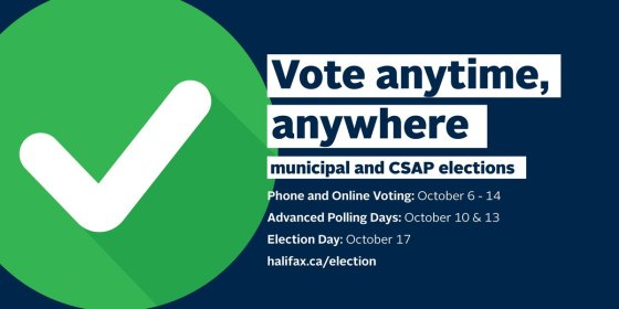 Vote anywhere any time
