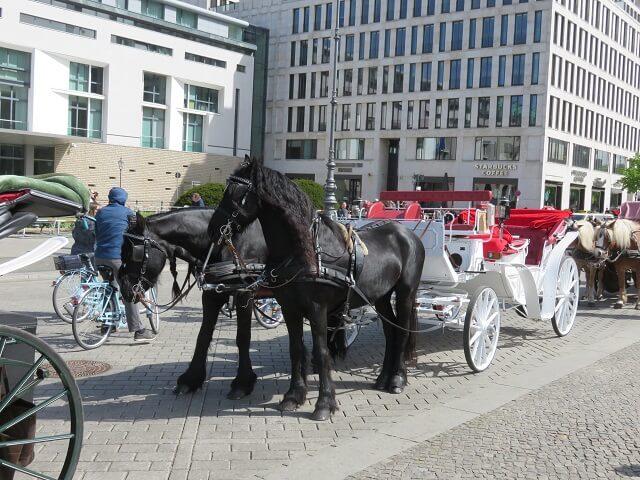 ブランデンブルグ門前に待機している馬車