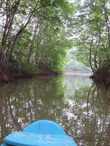 ベトナム・カンザ―国立公園をボートで観光