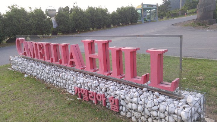 Camellia Hill 카멜리아힐