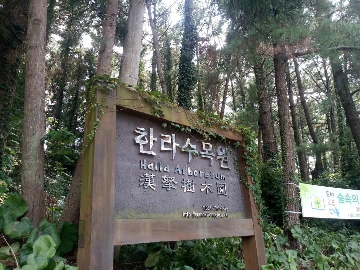 Halla Arboretum 한라수목원