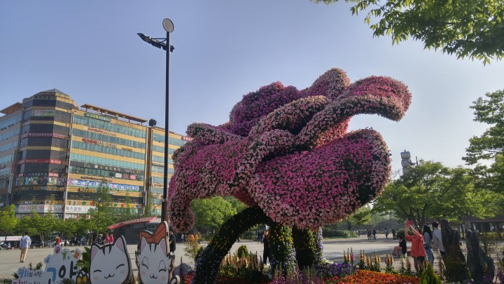 Goyang International Flower and Horticulture Festival 고양국제 꽃 박람회