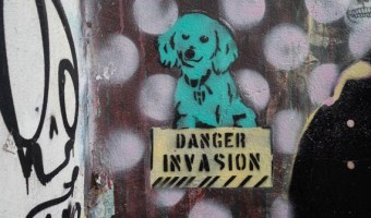 Buenos Aires street art cute dog stencil
