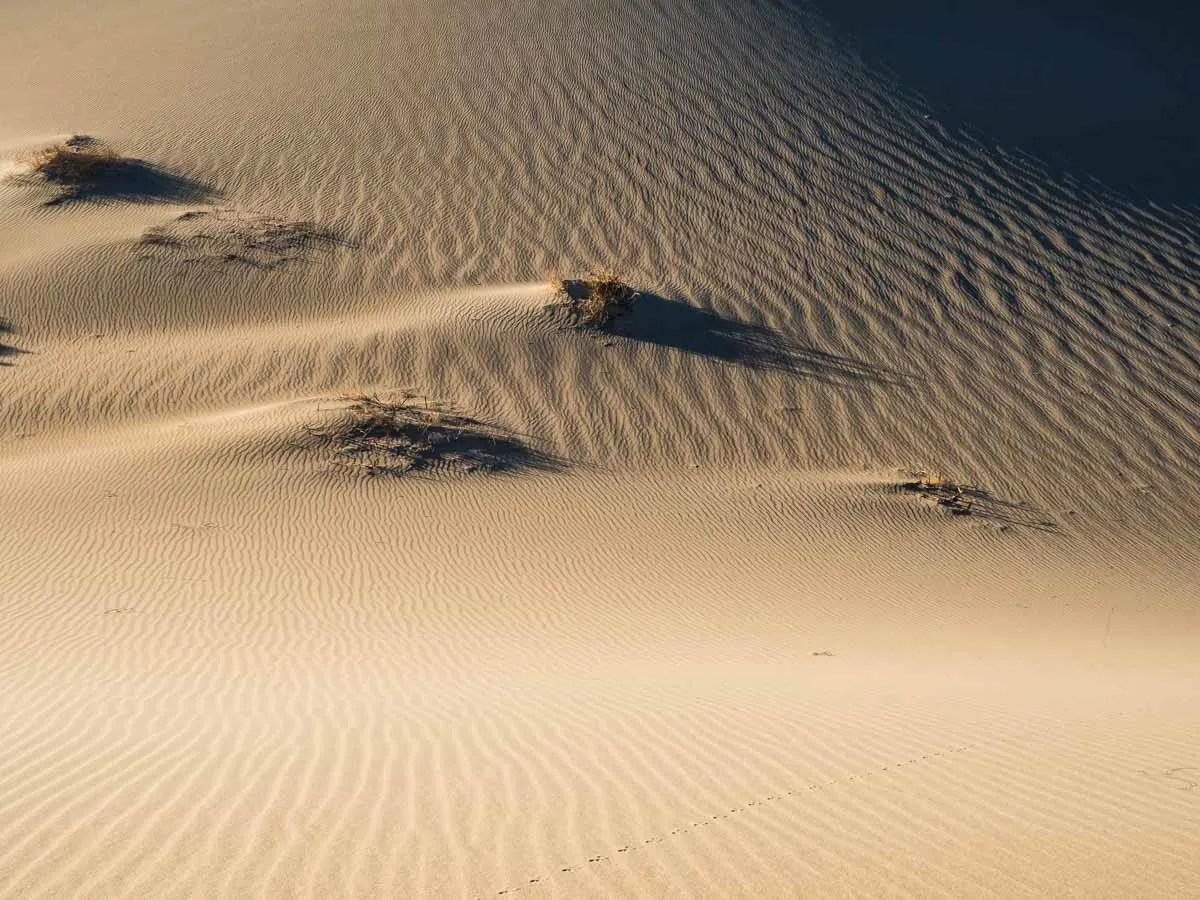 Death Valley Dawn at Mesquite Dunes