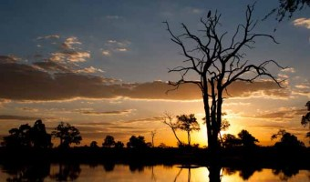 Sunset Hwange National Park Travel Magic