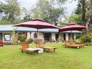 Ceylon Tea Bungalows Sri Lanka lawn