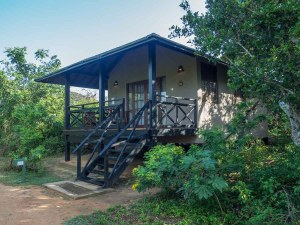 Sri Lanka luxury hotel Cinnamon Wild exterior