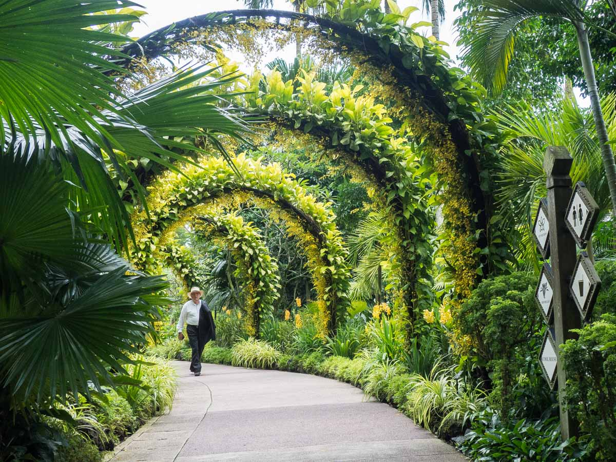 Itinerary for Singapore nature- Botanical Garden