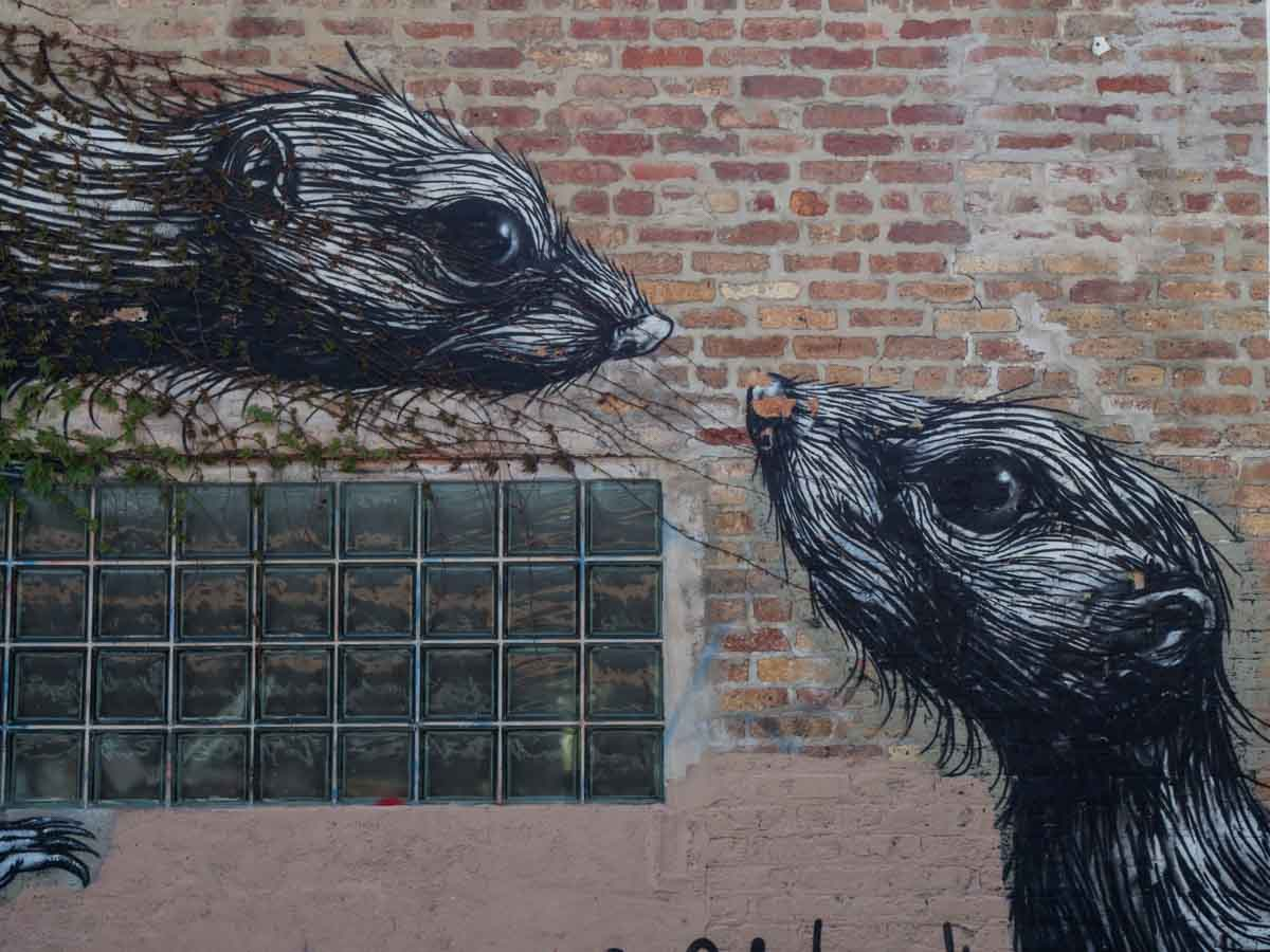 Chicago street art rats by ROA