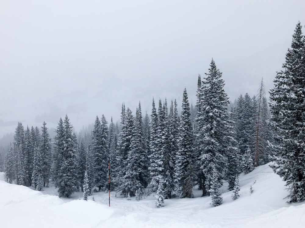 Ski Salt Lake City: Alta Ski Resort