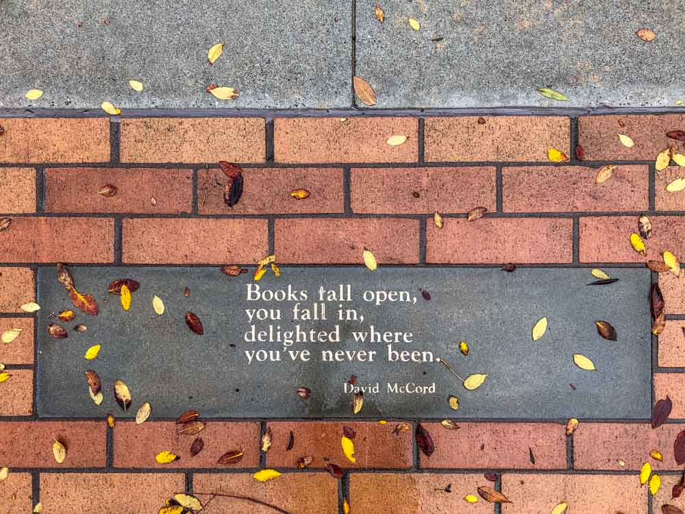 Books fall open, you fall in, delighted where you've never been. Book quote by David McCord. Bricks and leaves