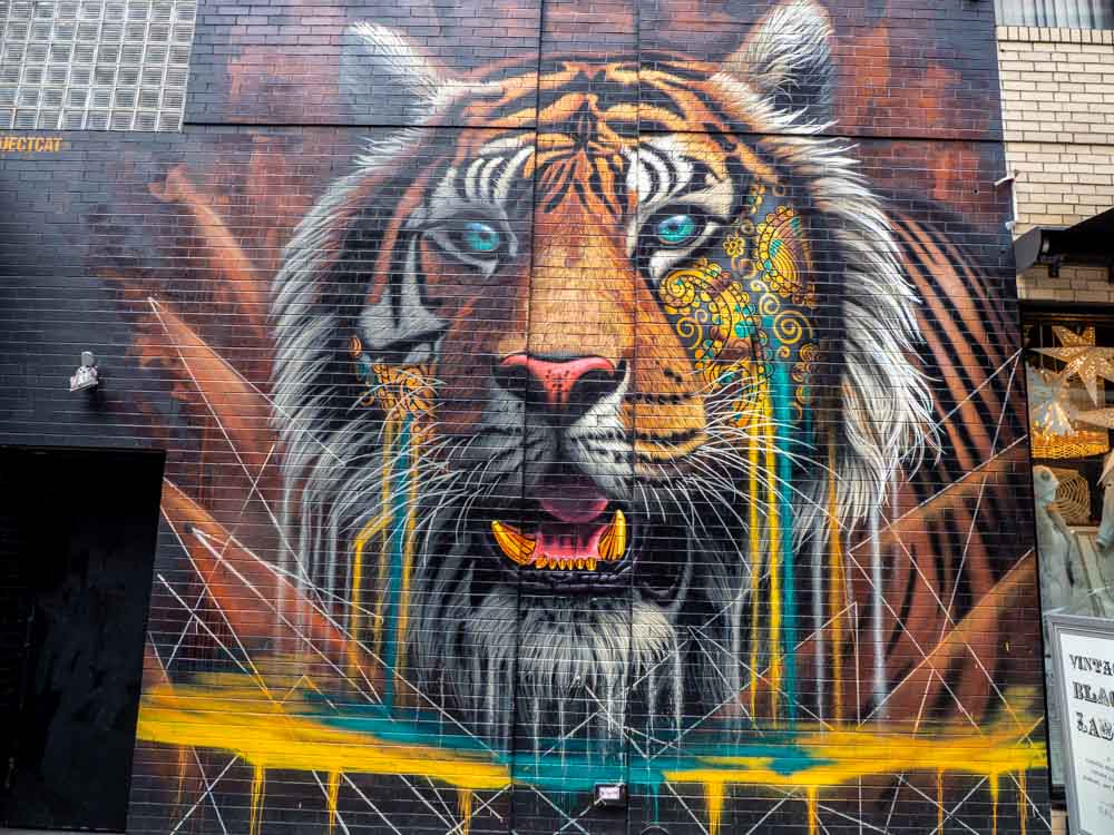 Street art tiger in NYC