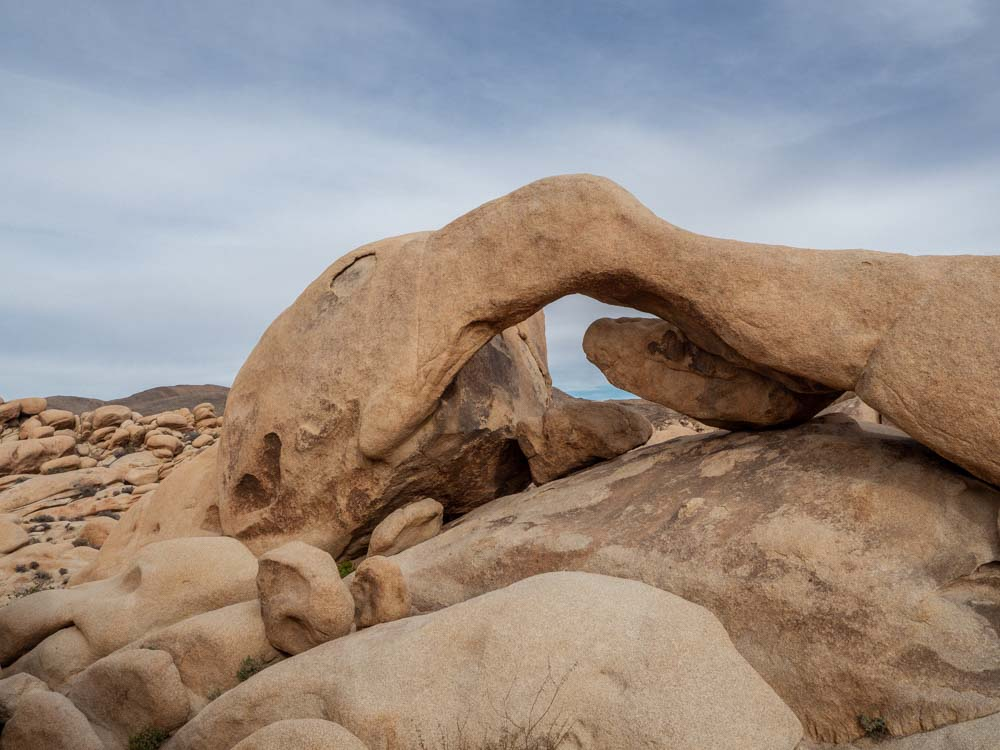 Joshua Tree national park Arch Rock