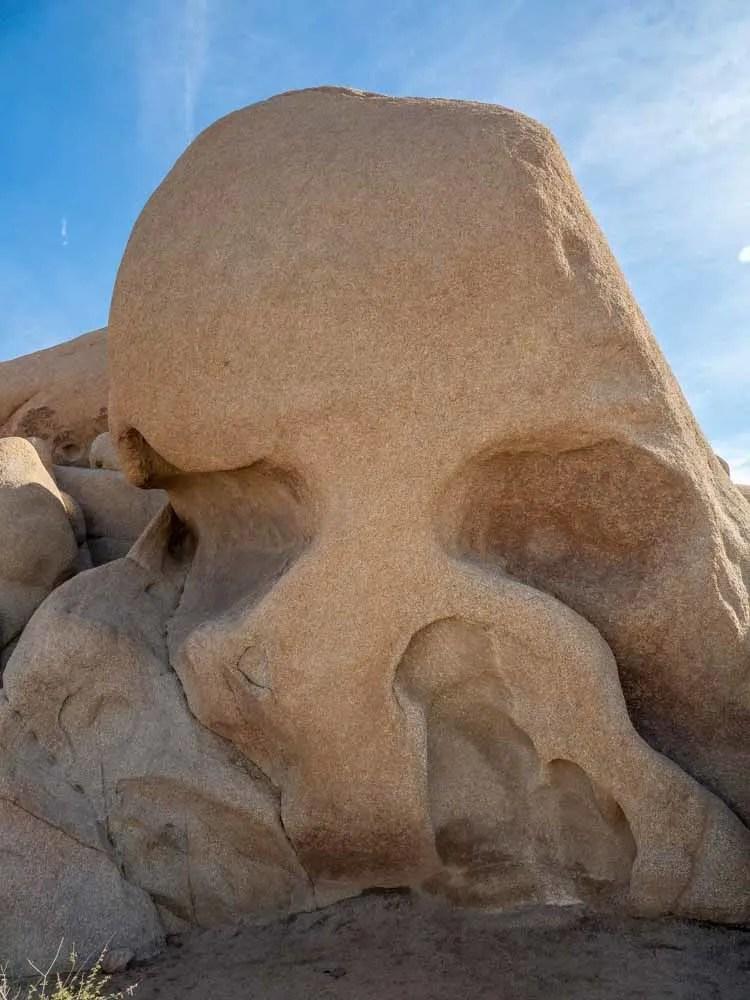 Joshua Tree, skull rock