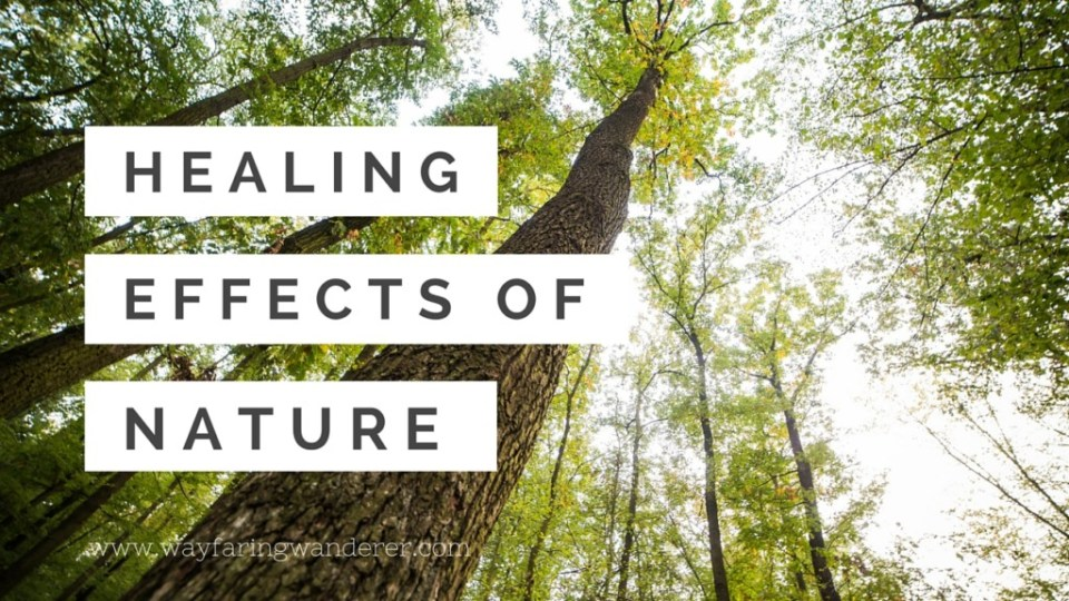 Healing Effects of Nature