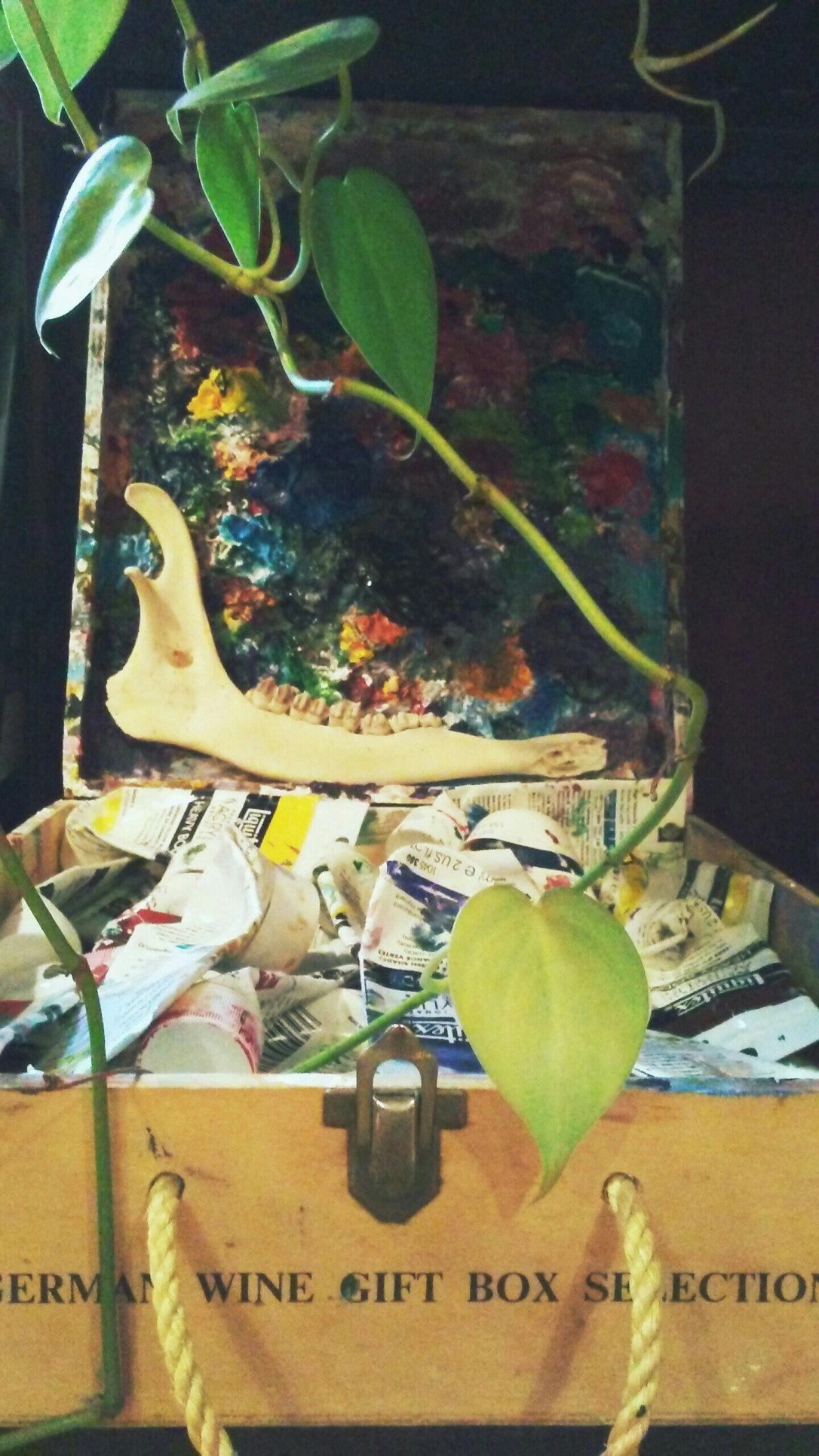 Deer jawbone resting on the lid of an artist's paint box with tubes of acrylic paints.
