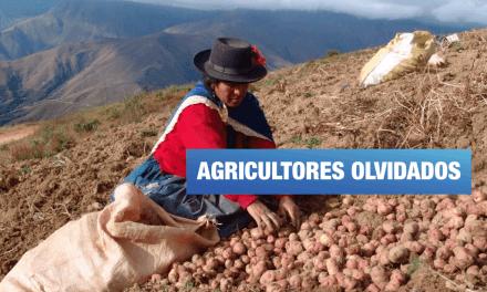 Día del Campesino: 18 años sin mejoras para el pequeño productor