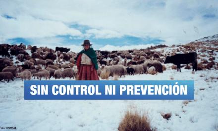 Contraloría: En 13 regiones no se distribuyó totalidad de abrigo a afectados por heladas y friaje