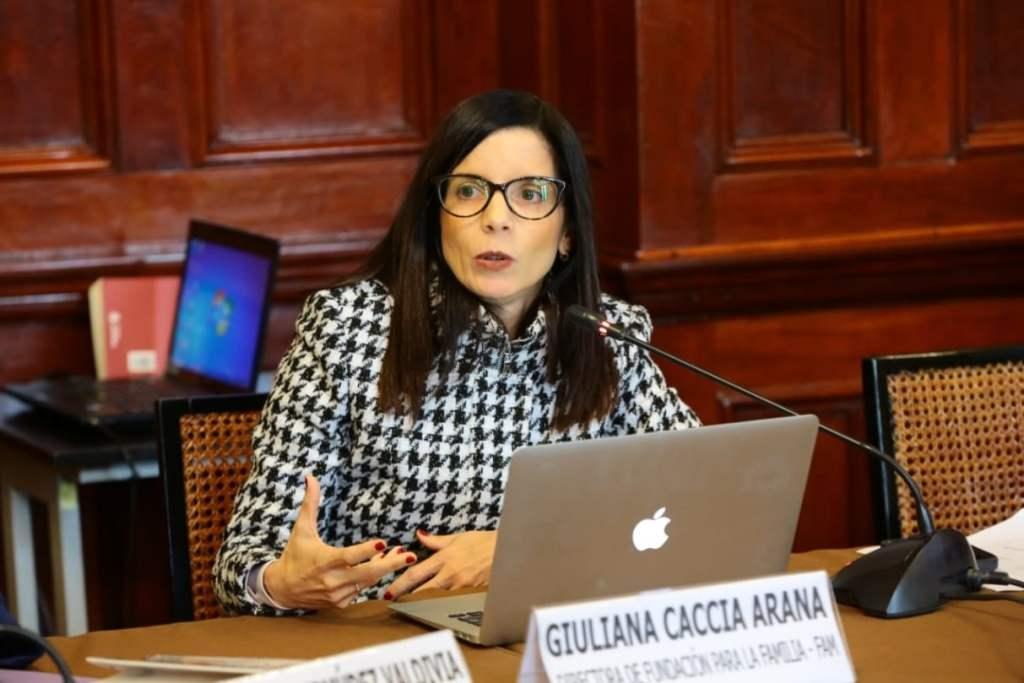 Comisión de Constitución