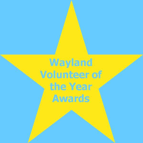VolunteerAwardsAd