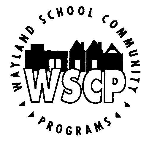 Wayland Summer Strings 2016 « WaylandeNews