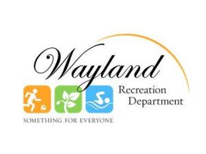 Family Science Night @ Wayland Middle School Cafeteria | Wayland | Massachusetts | United States